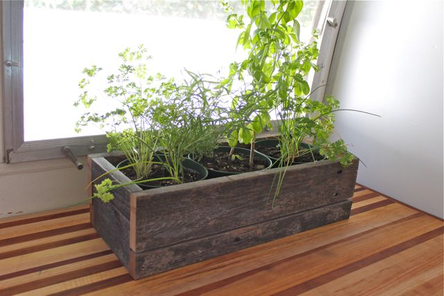 Countertop Herb Garden Kit : Countertop Herb Garden Grow Your Own Kitchen Countertop Herb Garden ...